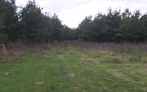 HUNTING / RECREATION IN BOWIE COUNTY, TEXAS
