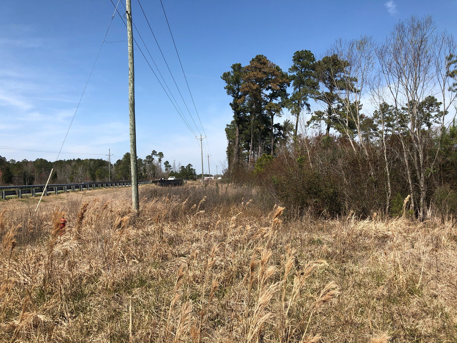 Beaufort County Lot For Sale, Belhaven, NC