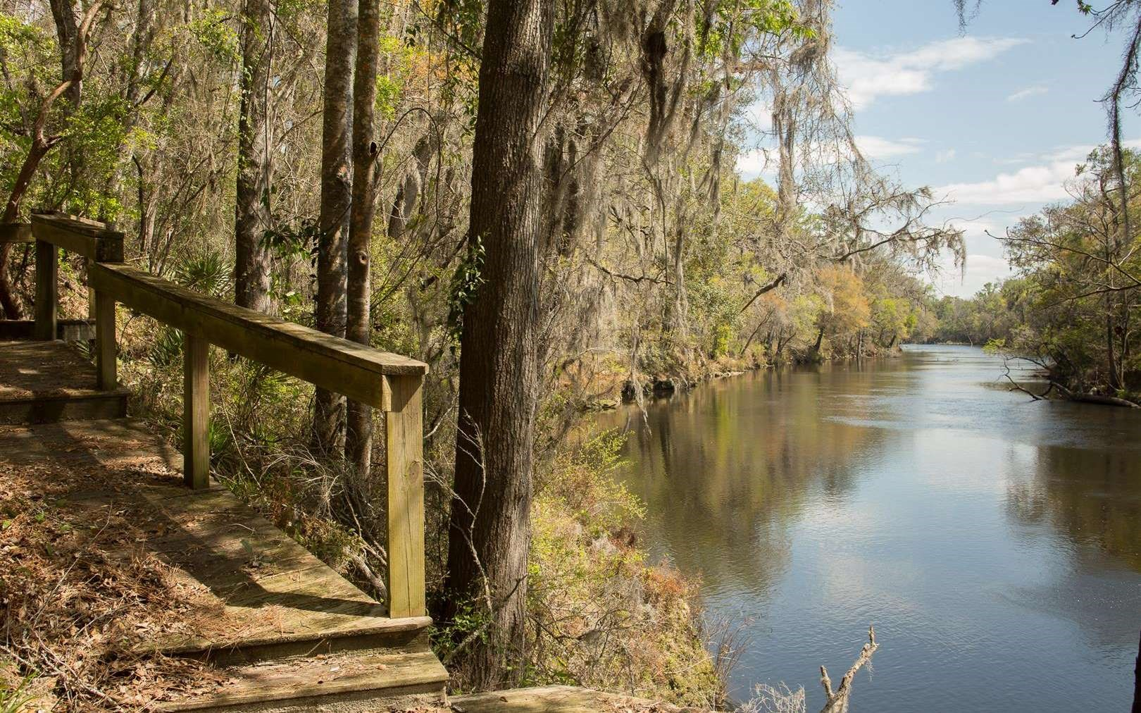 Beautiful North Florida Riverfront Lot