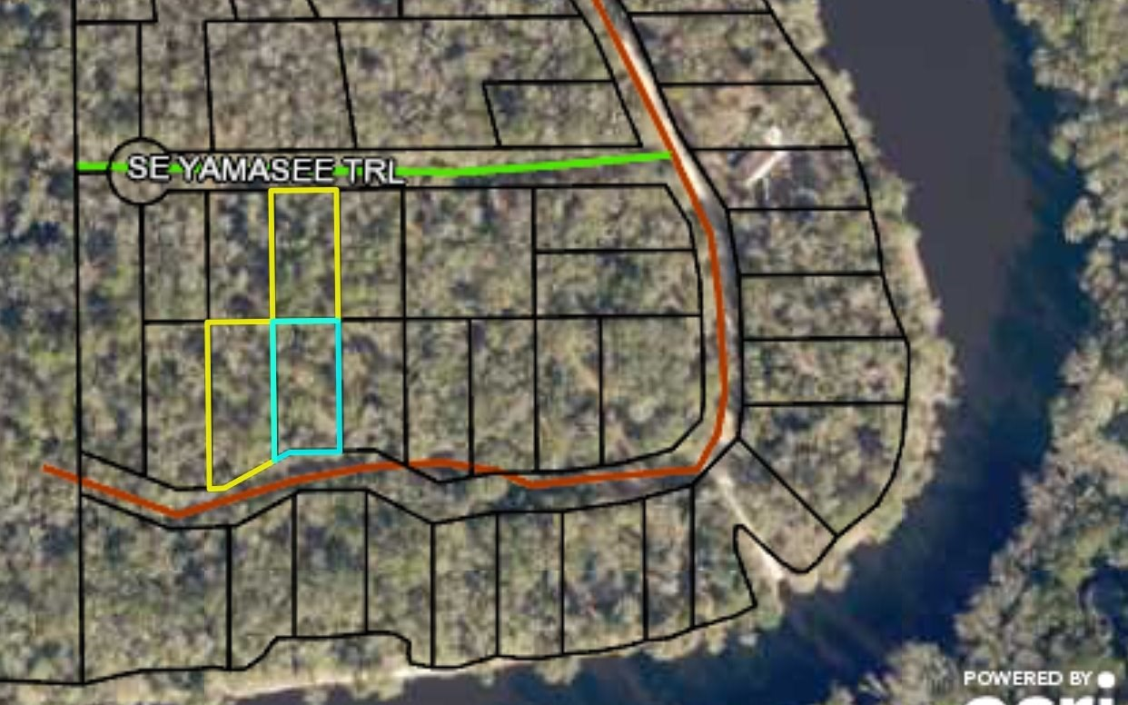 Group of Multiple Lots Walking Distance from Suwannee River