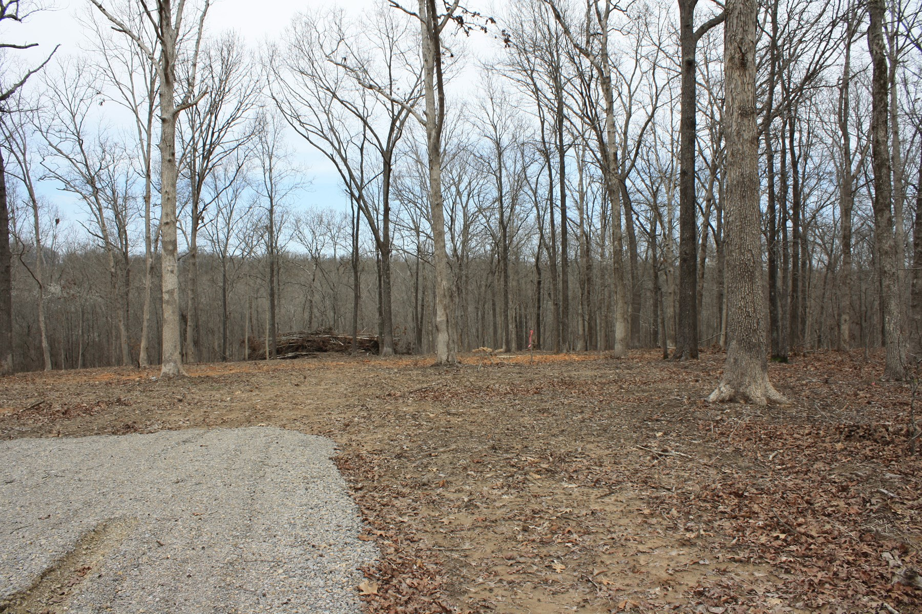 Wappapello Mo Recreational  Land for sale 5.52 acres