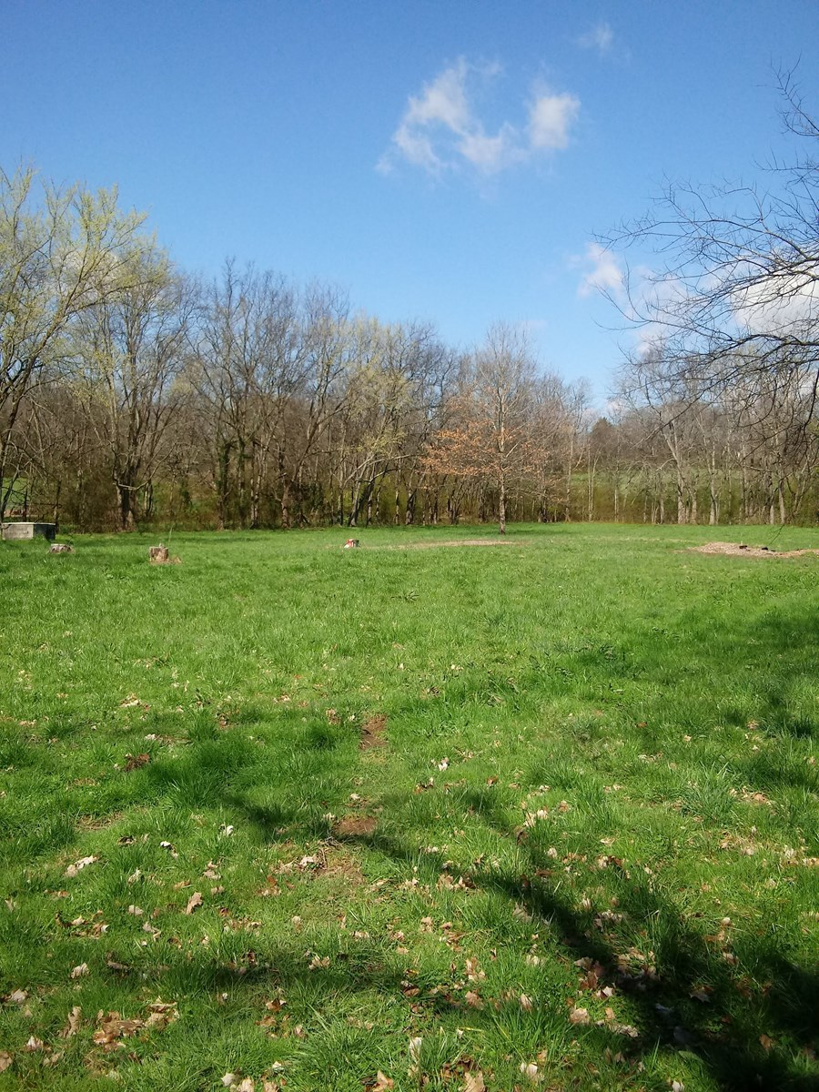 Land For Sale in Thompson's Station Tennessee!!