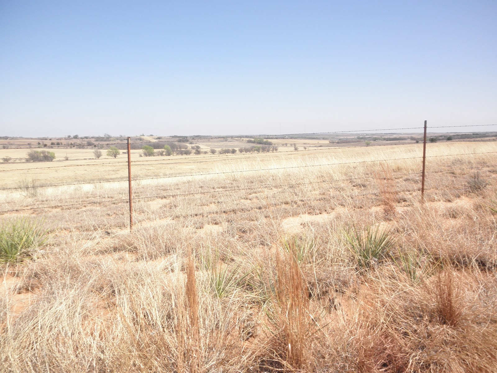 PASTURE LAND/HUNTING LAND FOR SALE