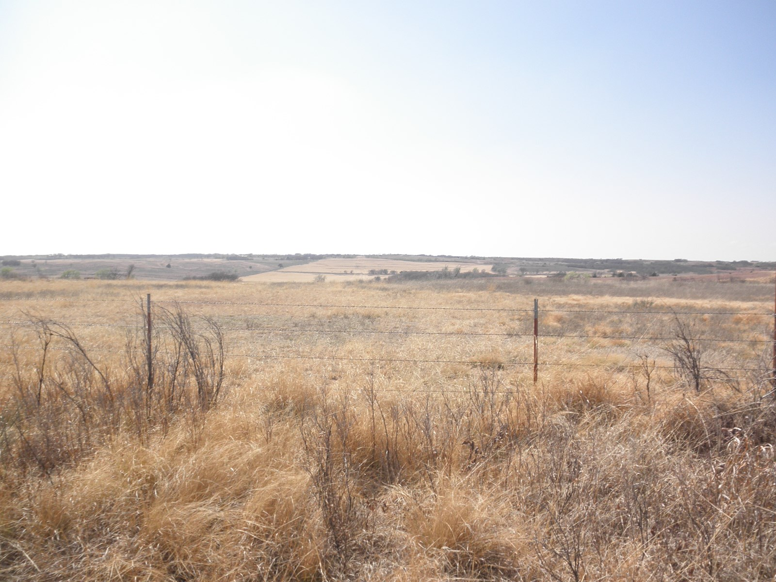 GRAZING, PASTURE, HAY, AND HUNTING LAND FOR SALE