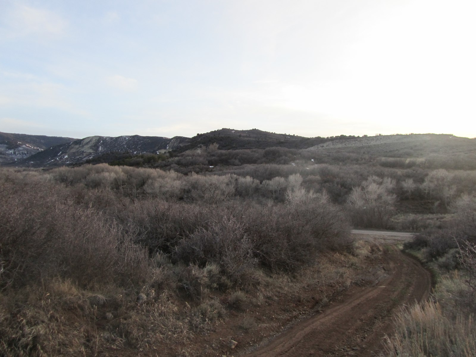 Acreage and Building Lot for Sale in Colorado