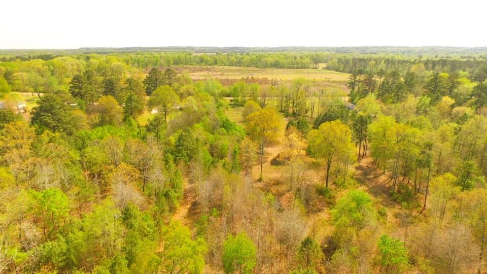 Land for sale near the Caddo River, Arkadelphia, Arkansas
