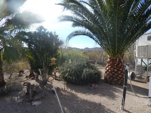 20 ACRE DESERT PROPERTY