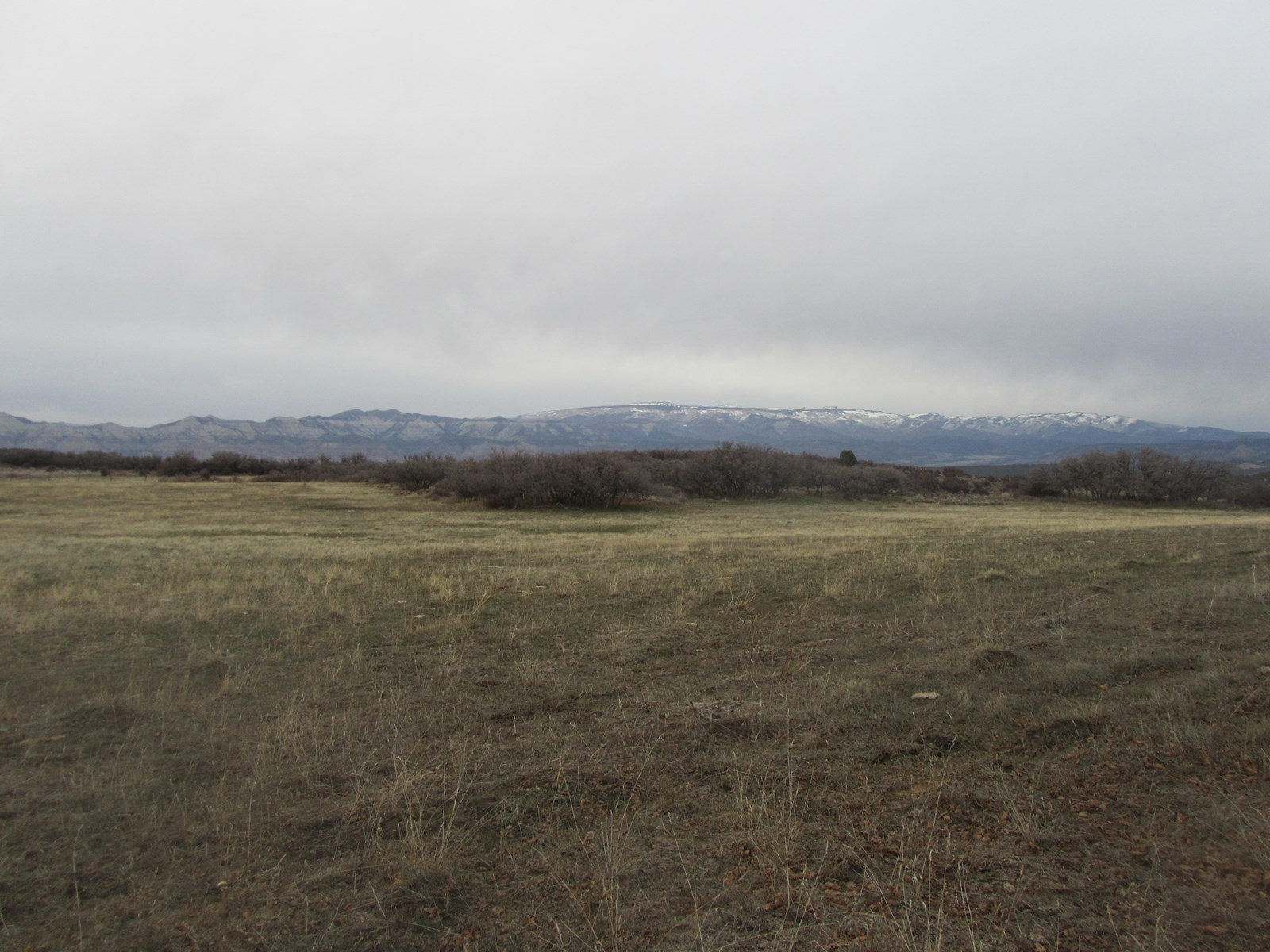 SPECTACULAR VISTAS FROM THIS VACANT ACREAGE FOR SALE IN CO