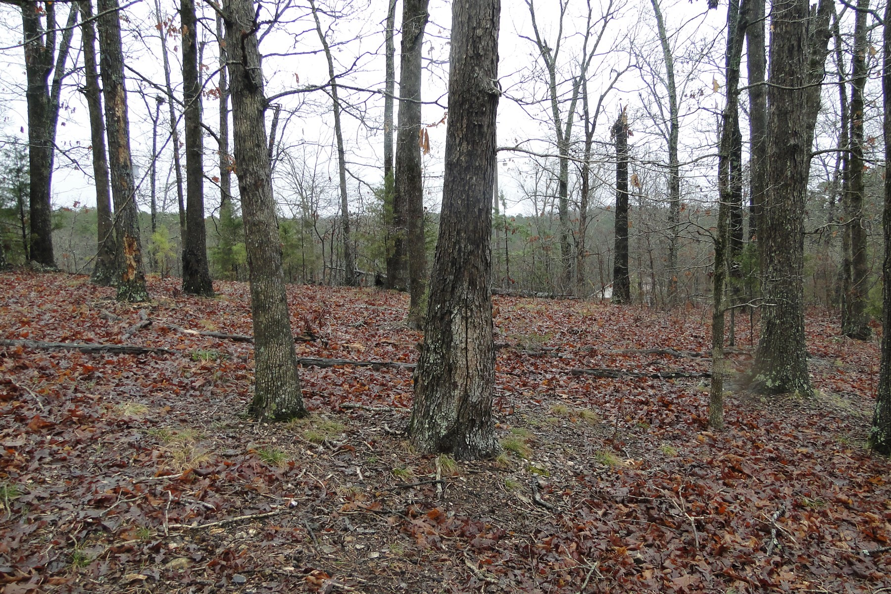 VACANT LAND FOR SALE IN MELBOURNE, ARKANSAS