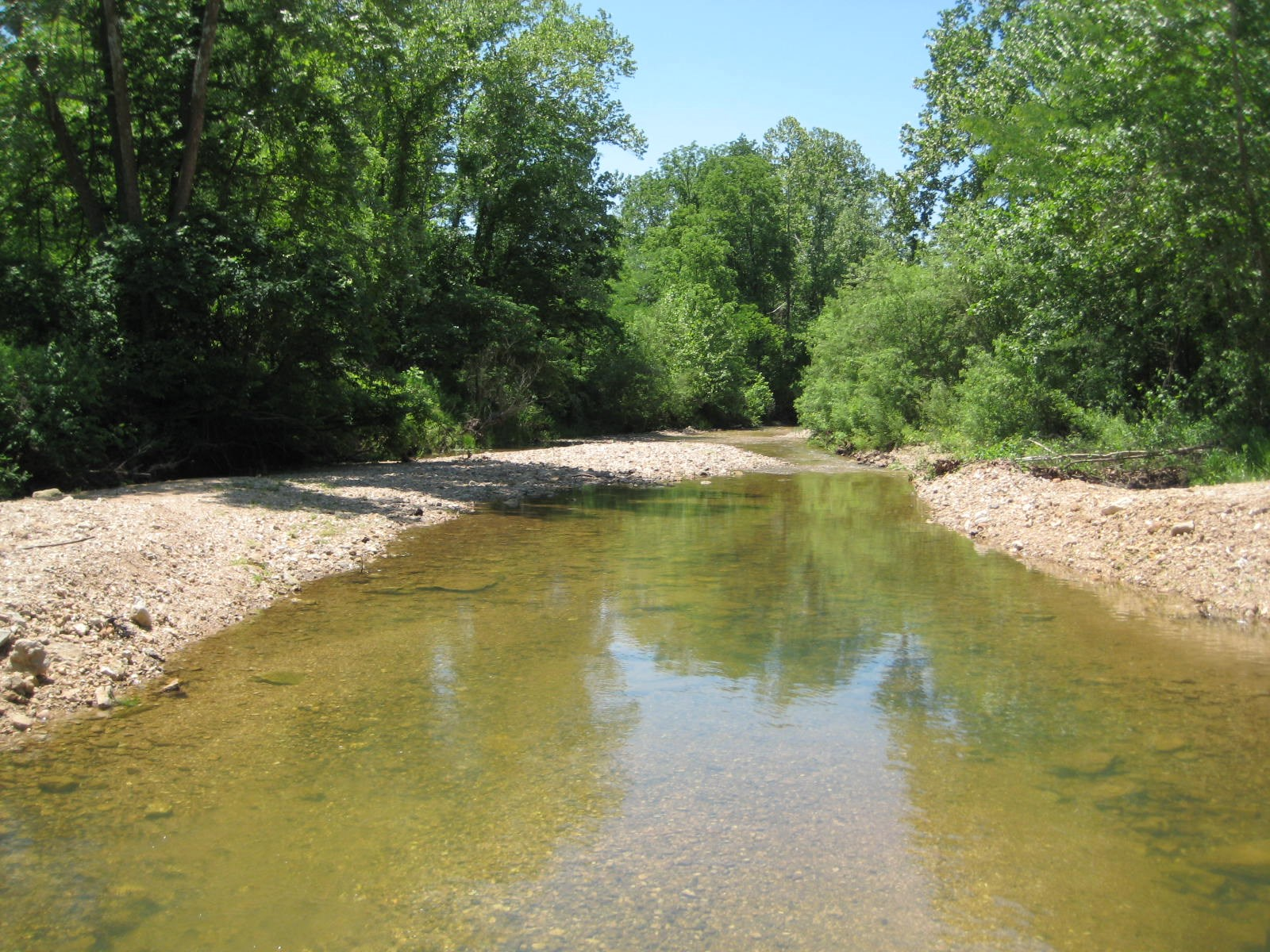 Land With Live Creek! 10 Acres! Versailles MO!