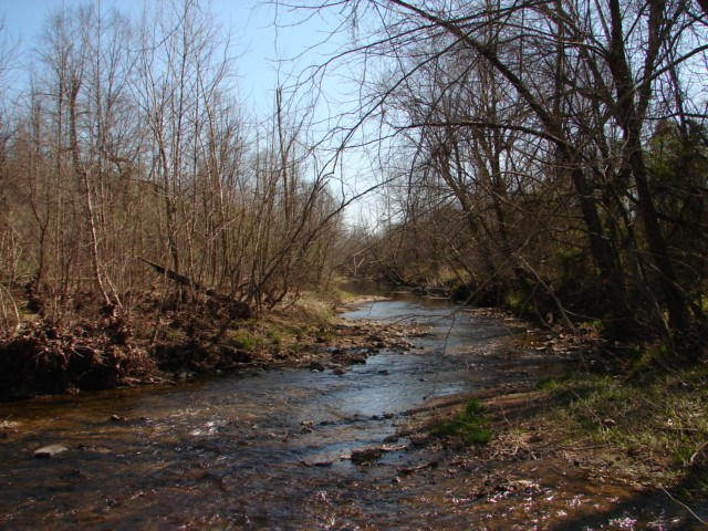 Arkansas Strawberry River Frontage & Nature Lover's Retreat