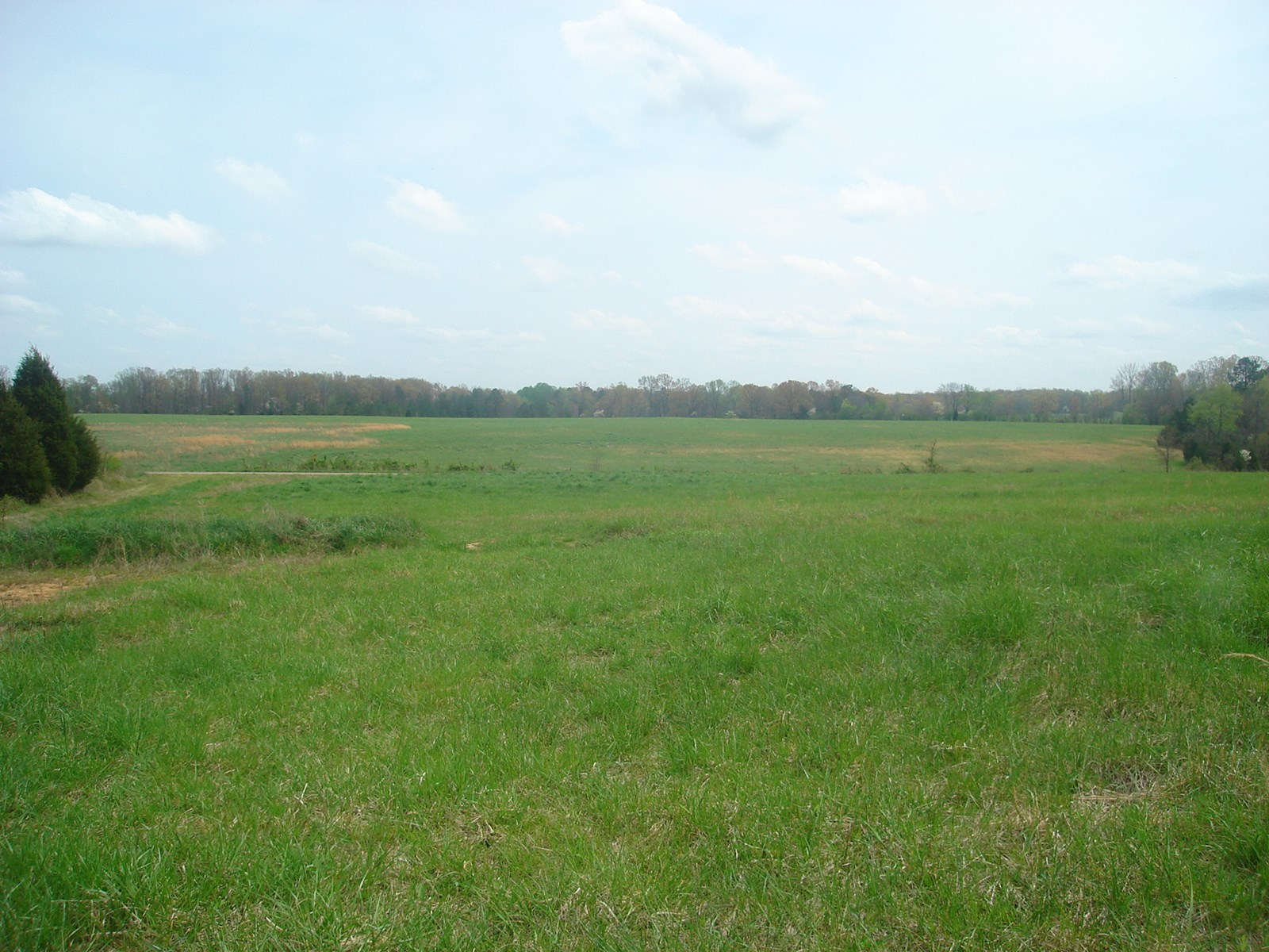 LAND IN TN FOR SALE WITH PASTURE, HOBBY FARM, HUNTING, BUILD