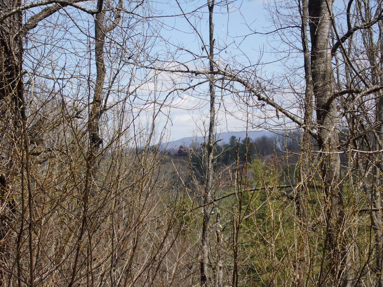 Building Lot for Sale Near New River Blue Ridge Moutains