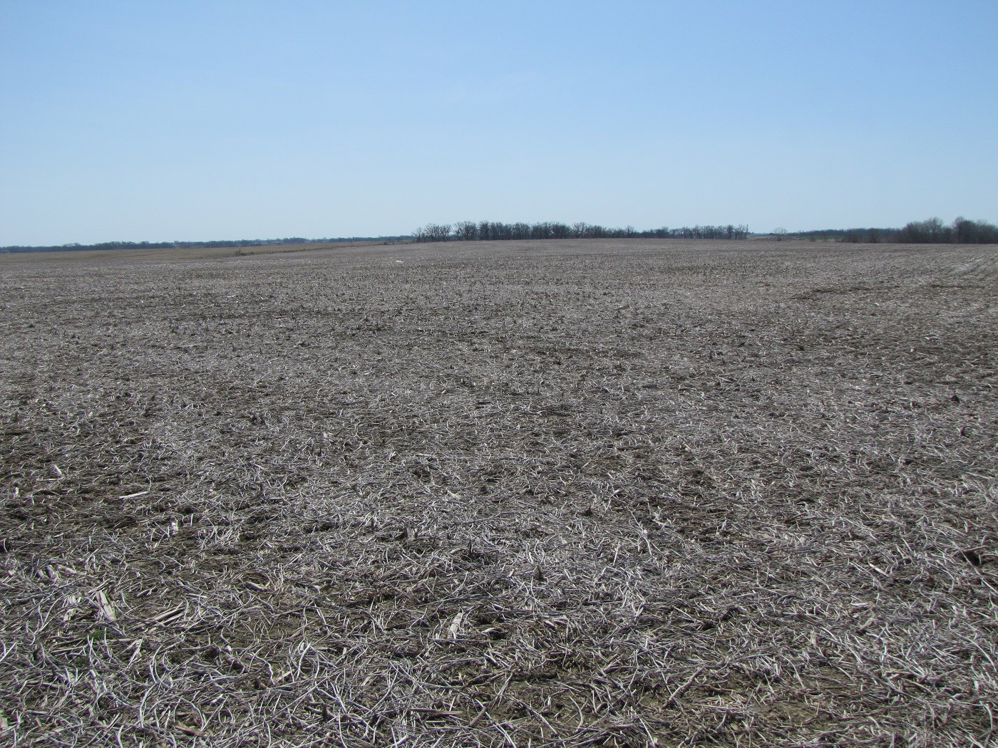 MO FARMLAND, FLAT/BLACK ROW CROP, NEMO FARM FOR SALE