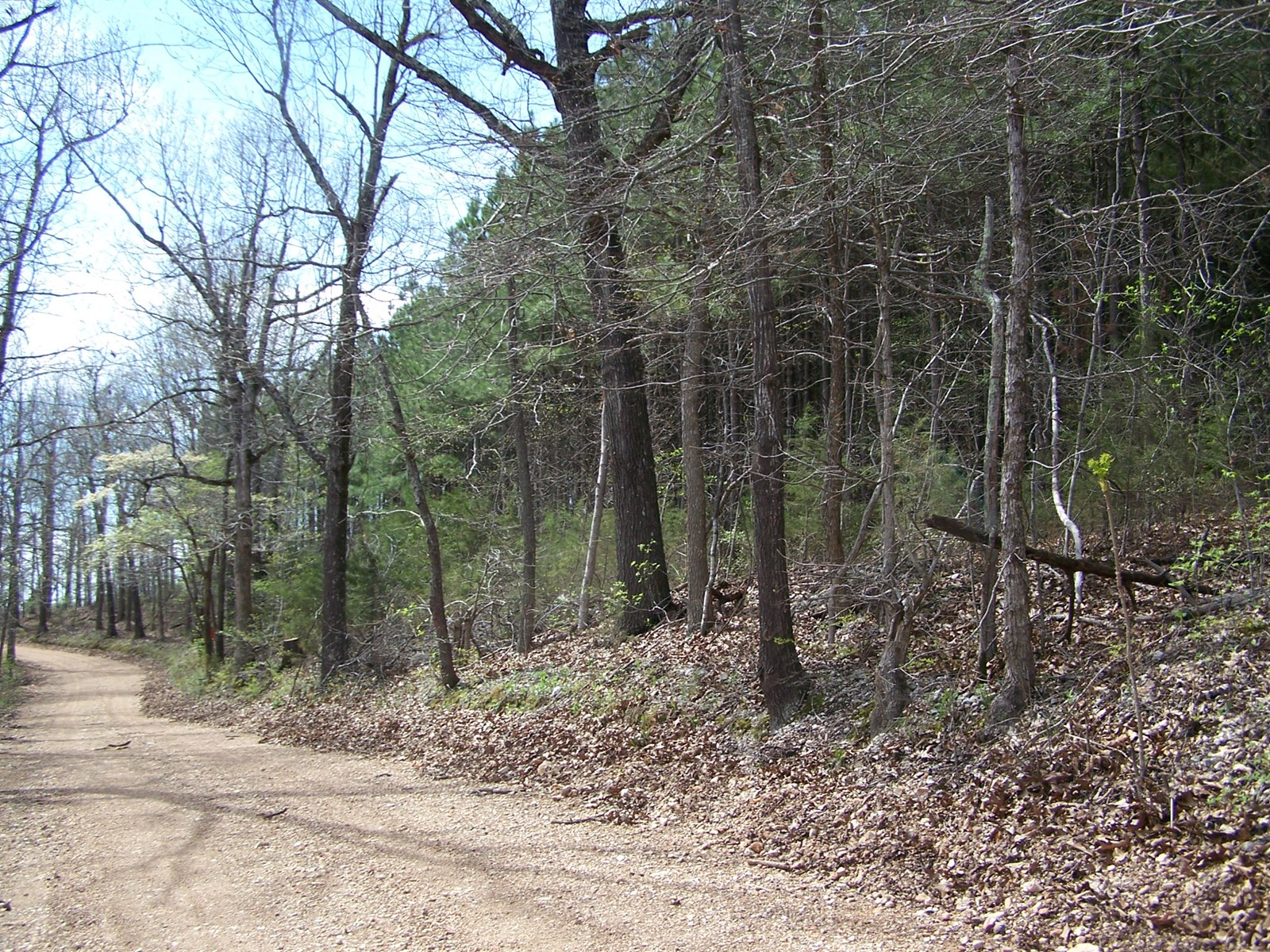 Arkansas Hunting & Recreational Property for Sale in Ozarks
