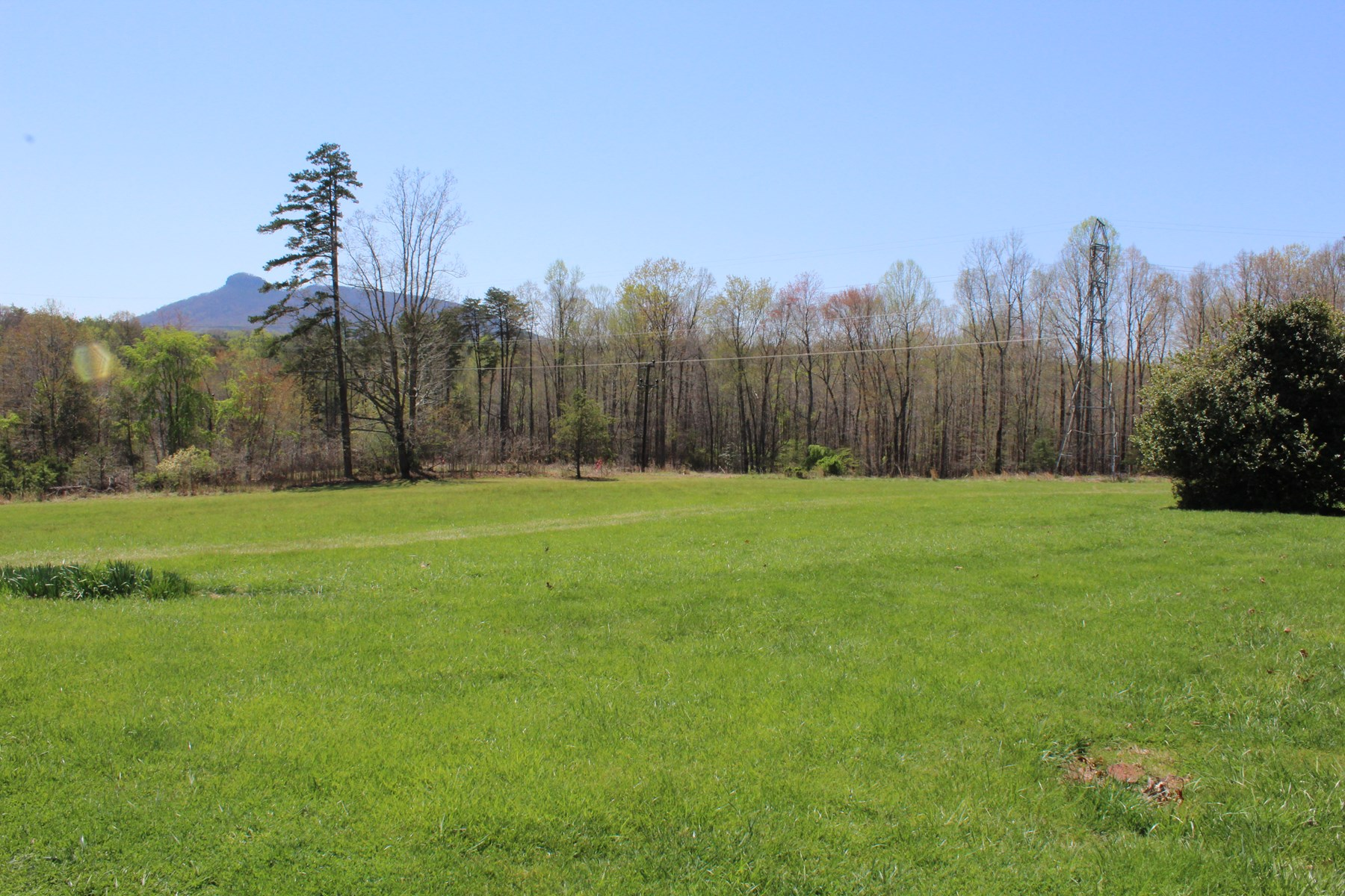 Land for sale in Pilot Mountain NC - Building Lot