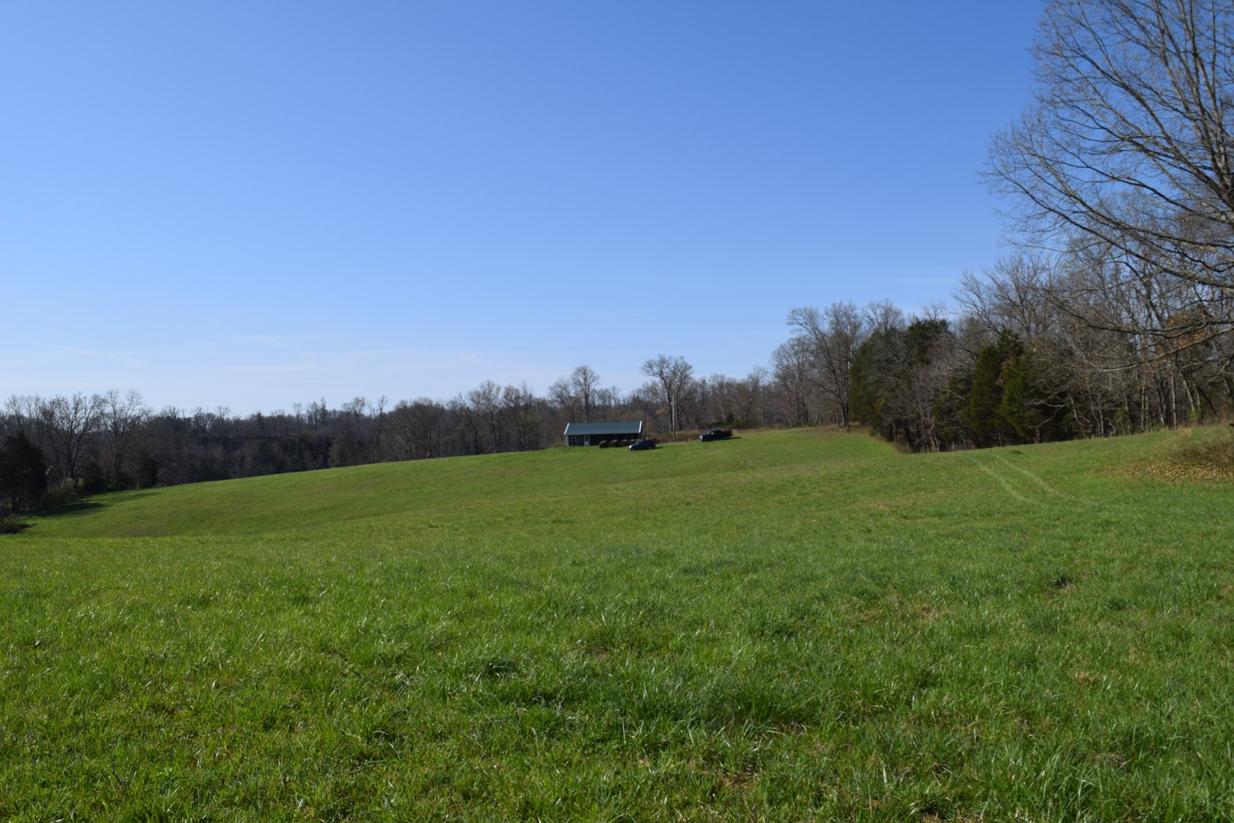 Land For Sale Cocke County- East Tennessee- Flowing Creek