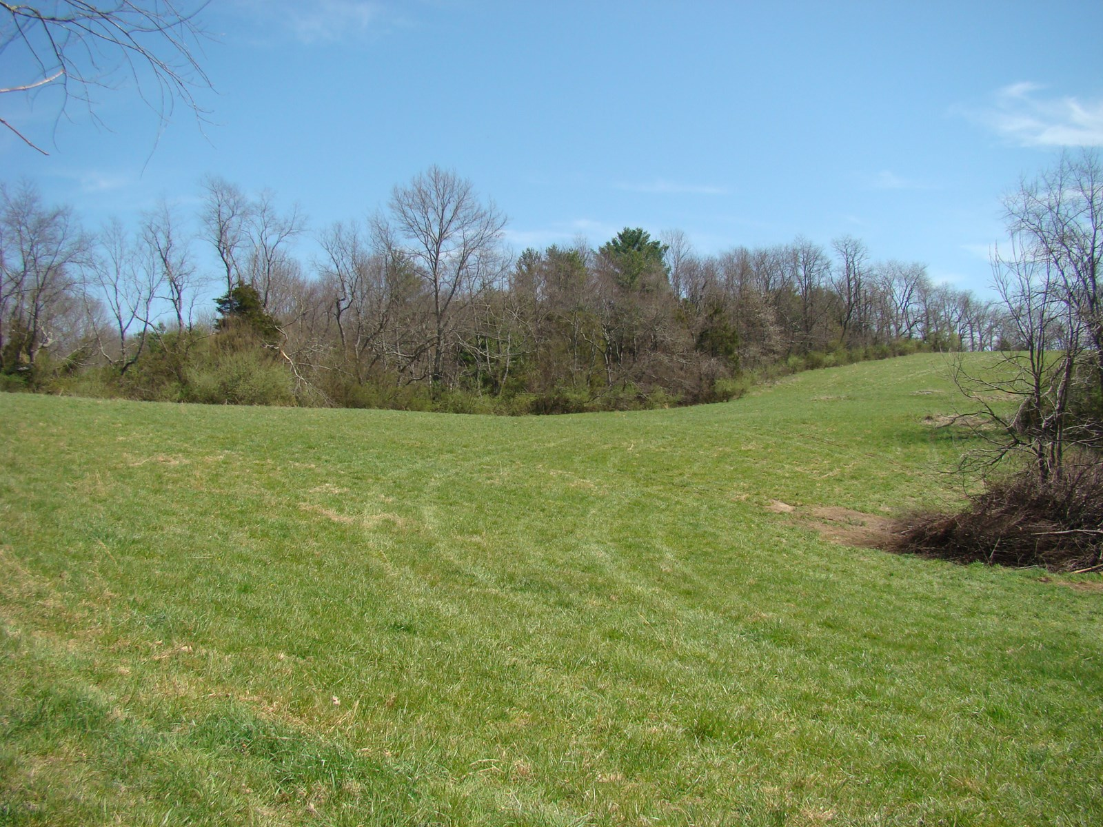 44.7 Acres For Sale In Wytheville, VA  24382
