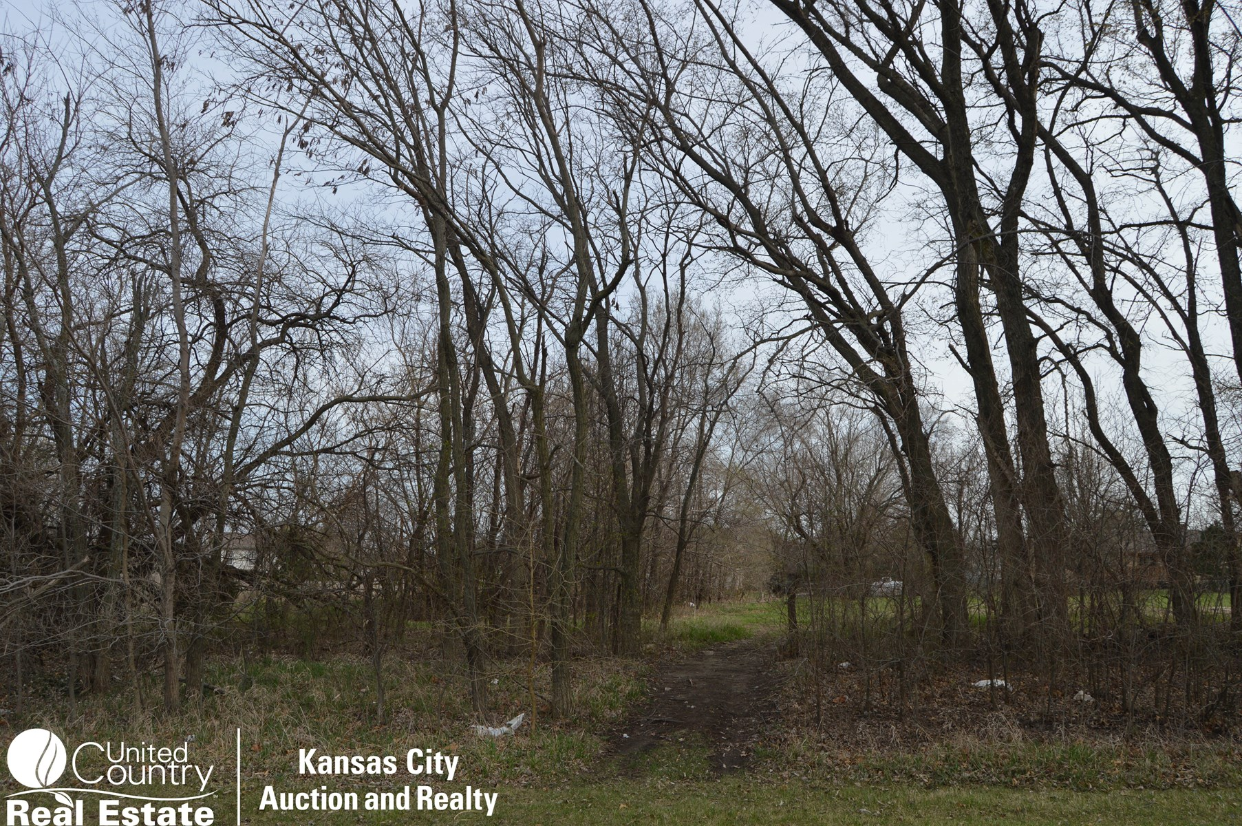 Commercial Development Auction, Spring Hill, KS (Tract 2)