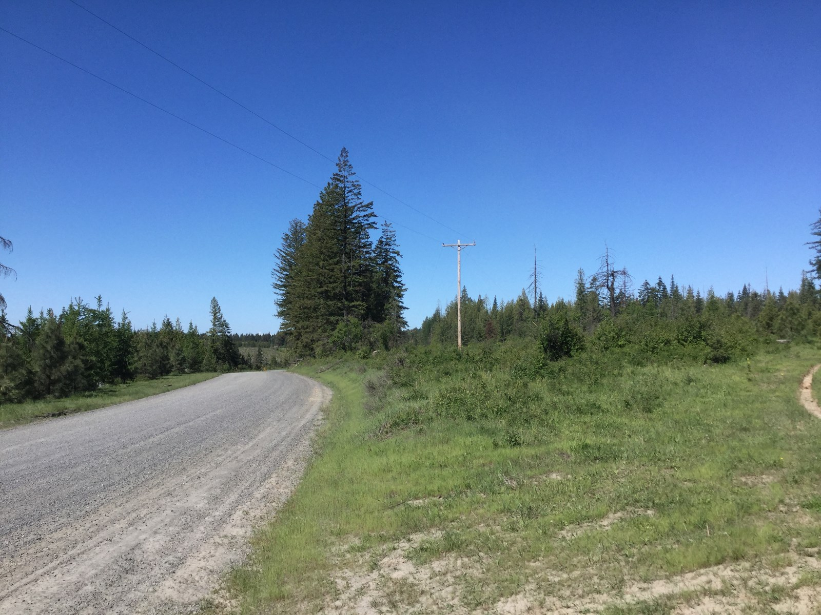 Recreational Acreage for sale near Orofino Idaho
