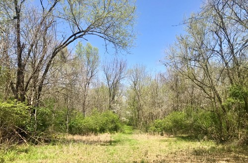 Land for Sale in Antrim Subdivision, Columbia, Tennessee