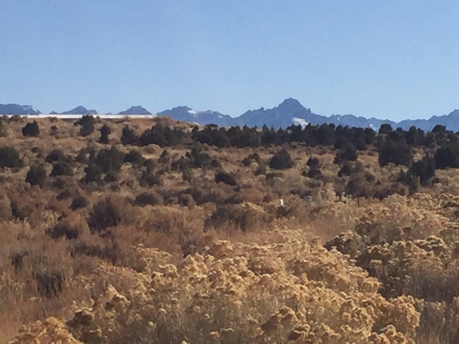 Mountain View Land For Sale Log Hill Mesa Montrose Colorado