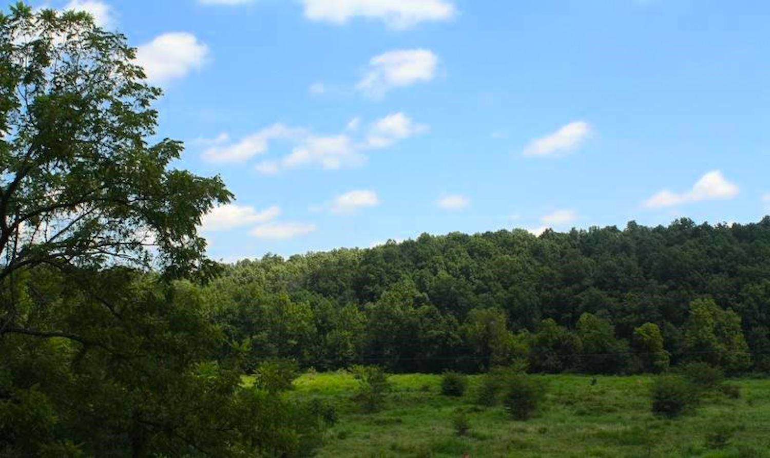 Land for Sale in Howell County