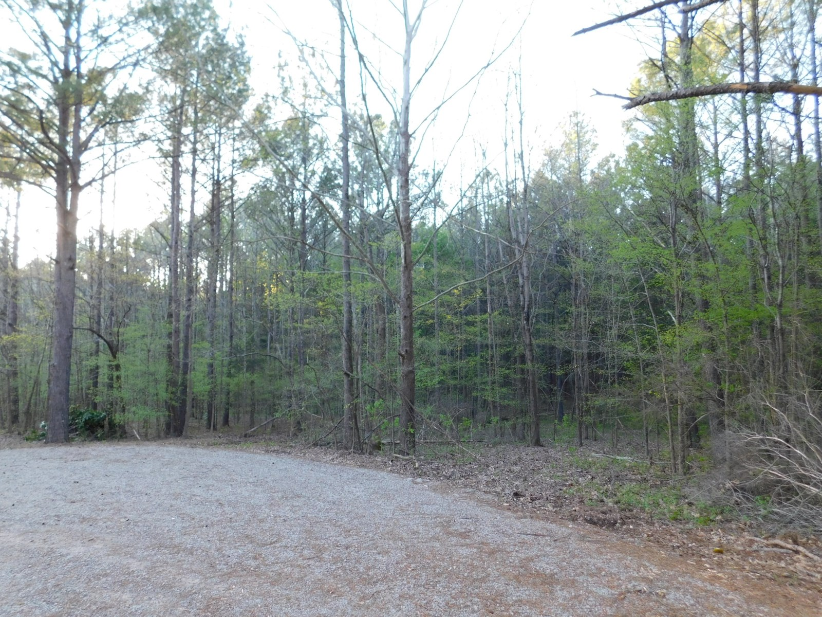 LAND IN MCNAIRY COUNTY FOR SALE WITH CITY UTILITIES