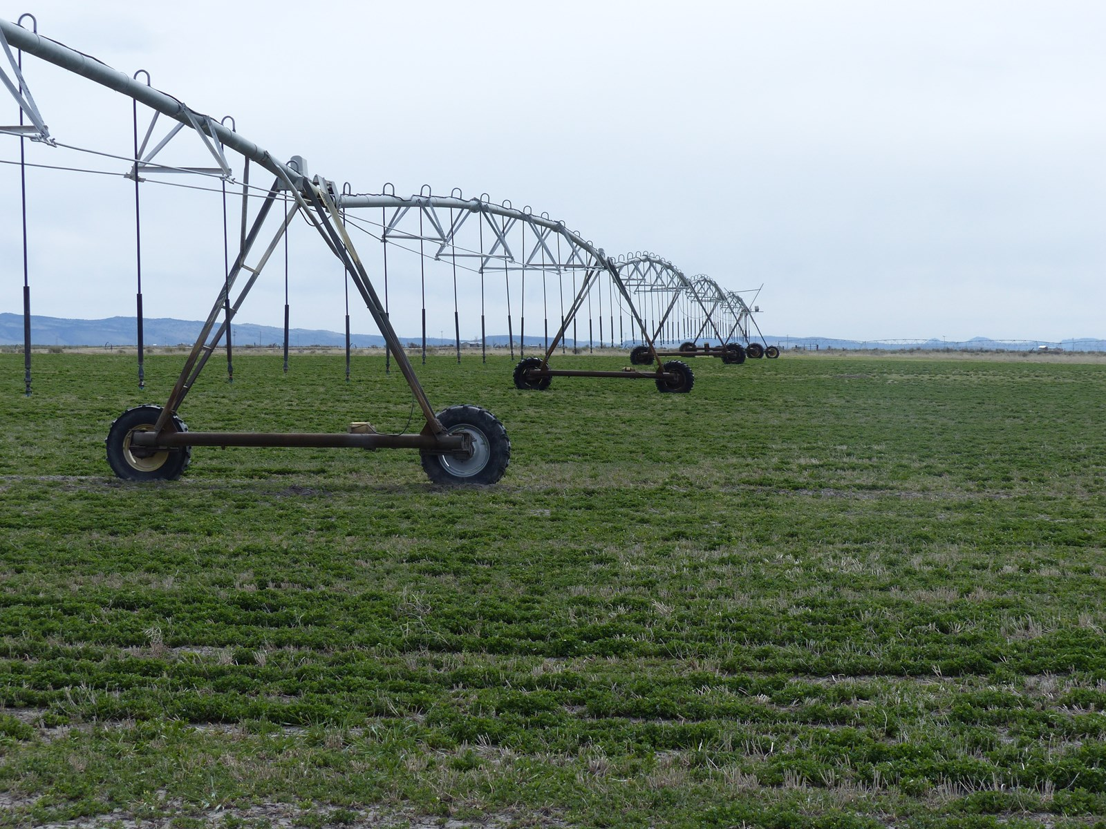 ORGANIC  FARM FOR SALE IN BURNS OR