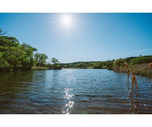 377 Acre Live Water Wade Hollow Ranch - Kerrville TX