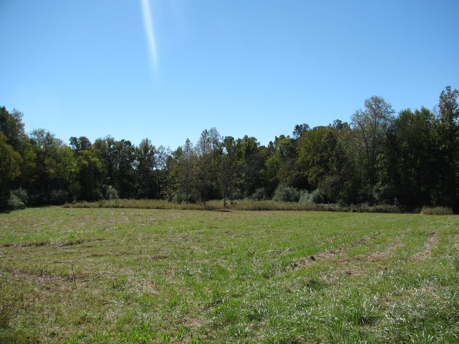 FENCED PASTURE LAND FOR SALE IN MORRIS CHAPEL, TN