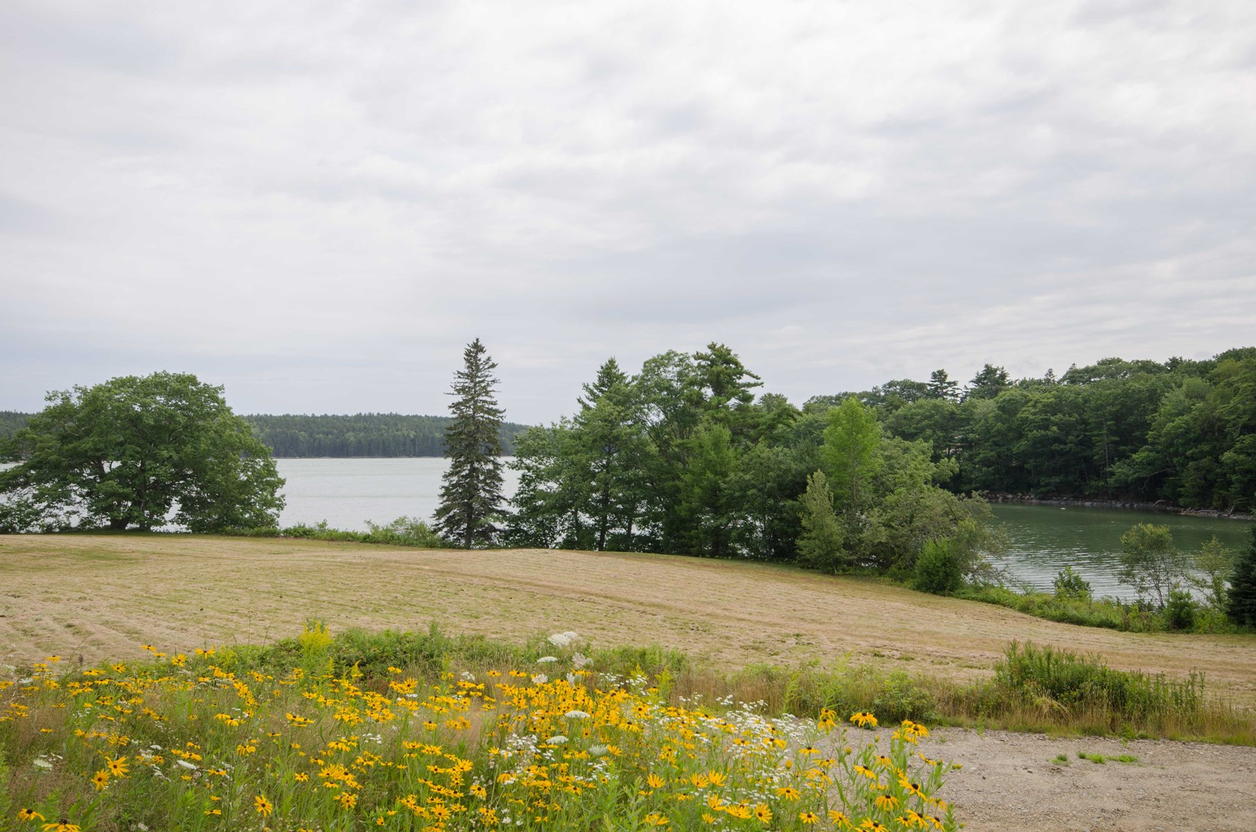 Blue Hill Bay Access | Coastal Maine Waterfront Property