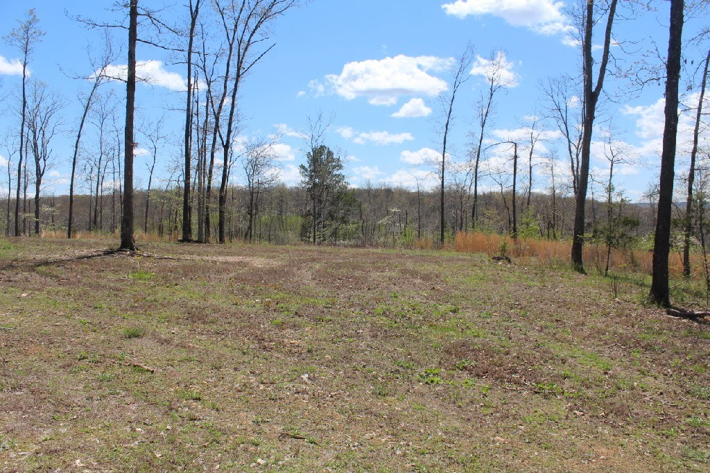 80 Acres For Sale With Power, Water, & Septic