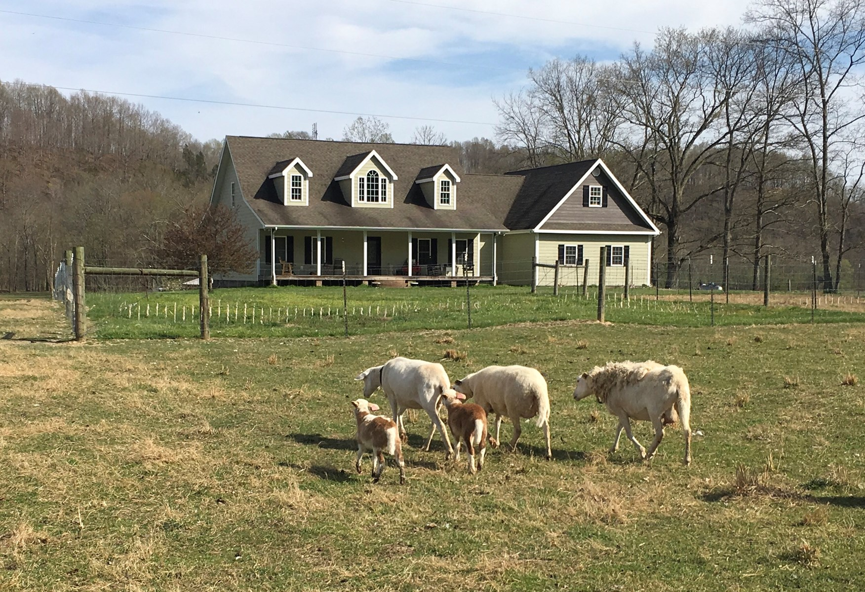 CUSTOM HOME ON 7.7+/- ACRES / HOBBY FARM-BARN - LIBERTY KY.