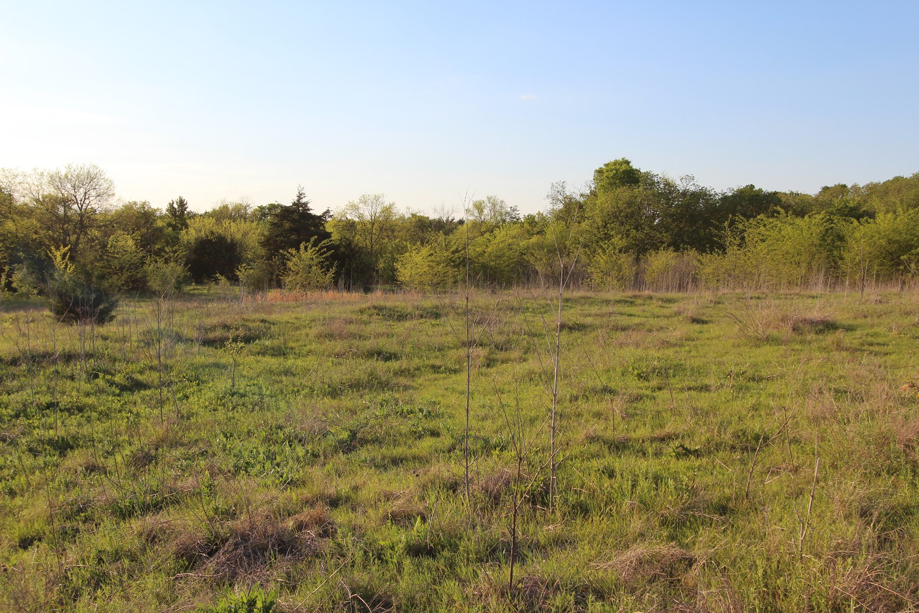 Country Home Build Site for Sale in Lamar County, Texas