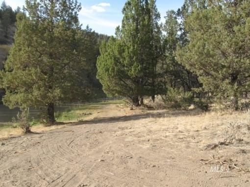 160 Acres Grazing/Rec Land for Sale with Creek