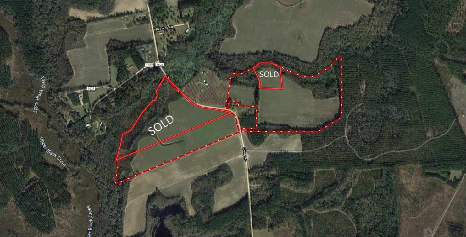 119 +/- Acres For Sale in Brooklet, GA--Open and Wooded