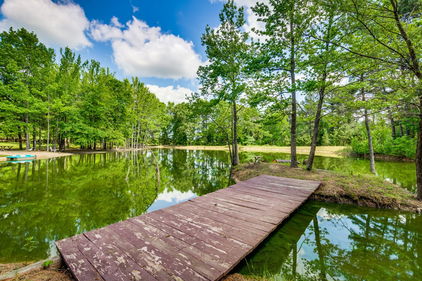 40 EAST TX ACRES - COUNTRY HOME - EQUINE - POND - GUEST APT