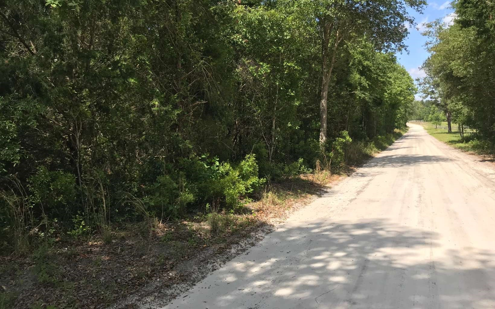 5 Acres in the North Florida Country