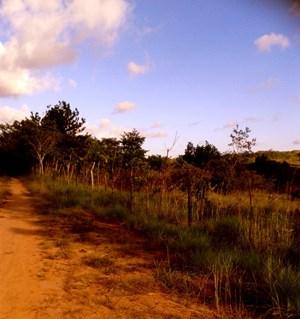 LAND FOR SALE IN PENONOME - PANAMA