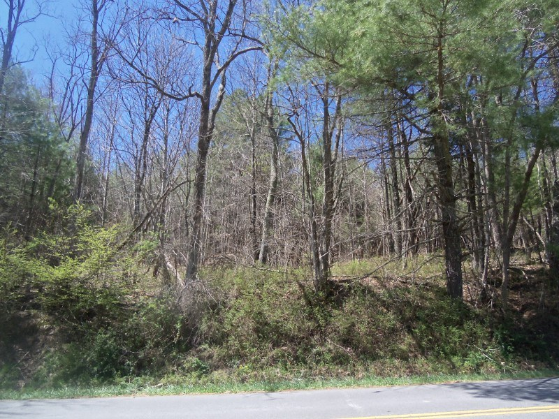 Wooded Building Lot in Floyd VA!