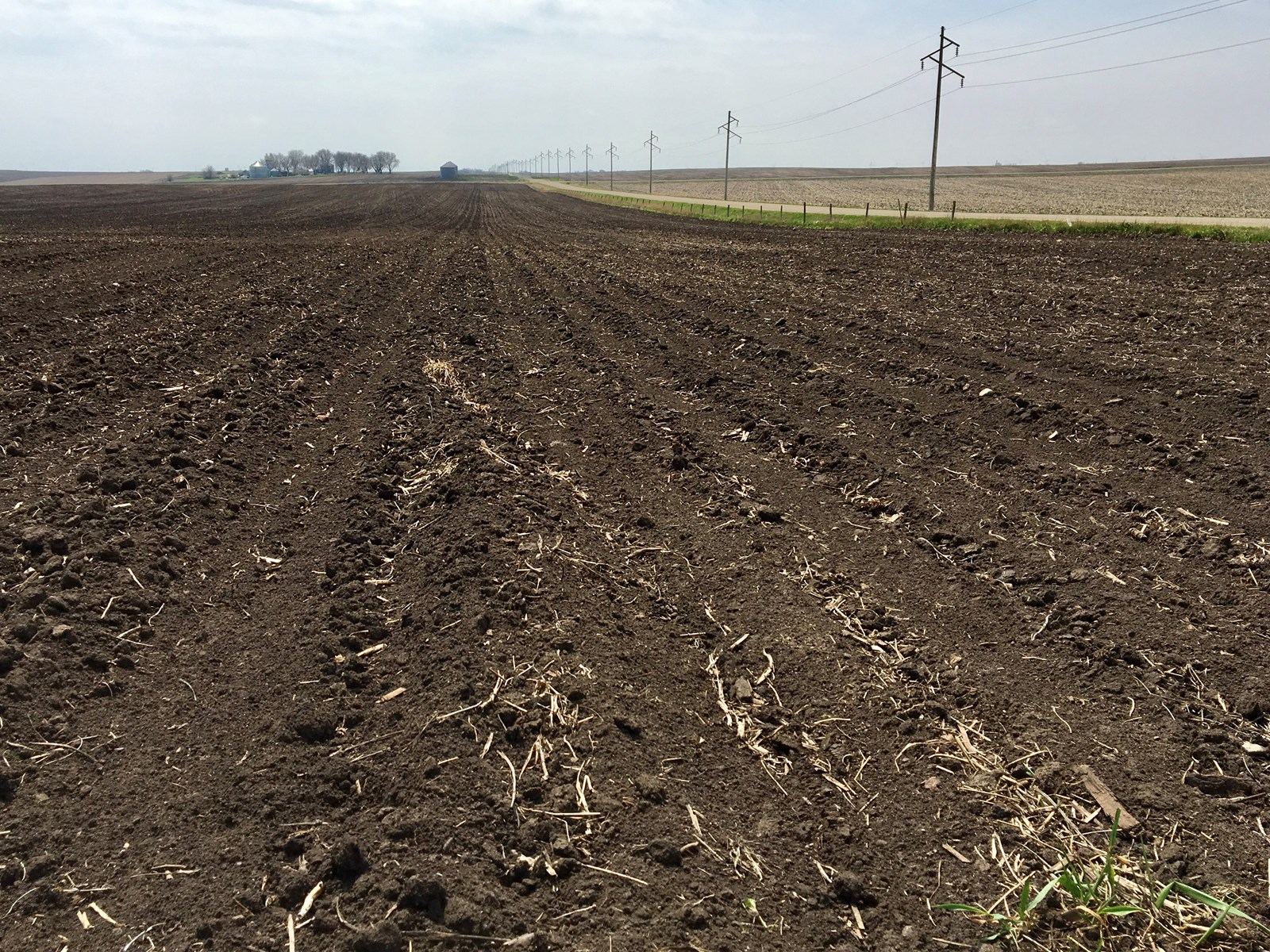 Calhoun County Iowa Farmland For Sale