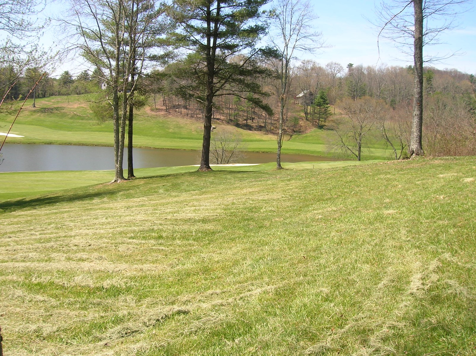 Beautiful Lot on Golf Course in SW Virginia