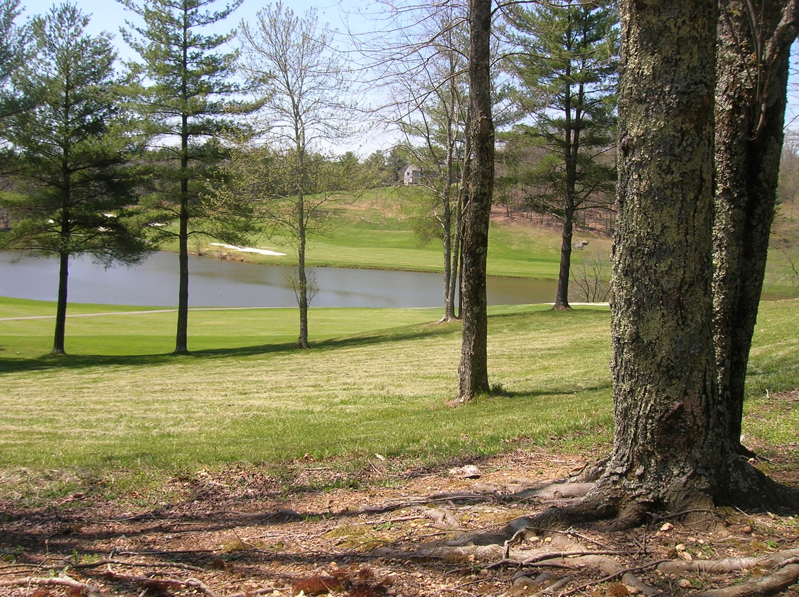 Lakefront Golf Course Frontage Land Ready to Build In SW VA