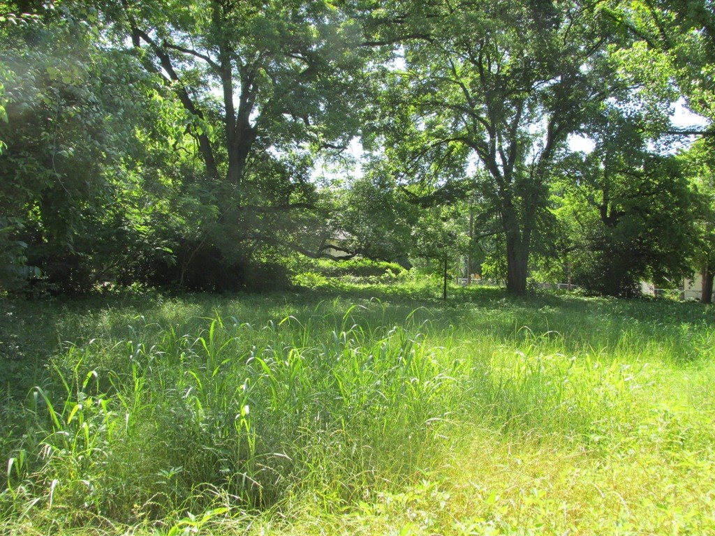 LOT IN PALESTINE CITY LIMITS TO BUILD HOME FOR SALE