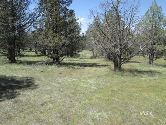 Alturas CA Recreational Property for Sale NE California