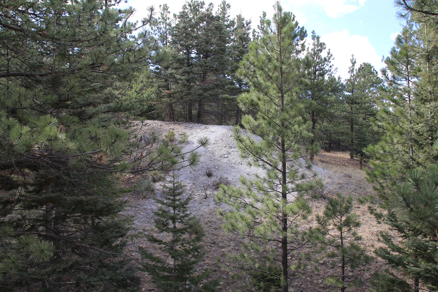 Land in SIlver Cliff Colorado Custer County