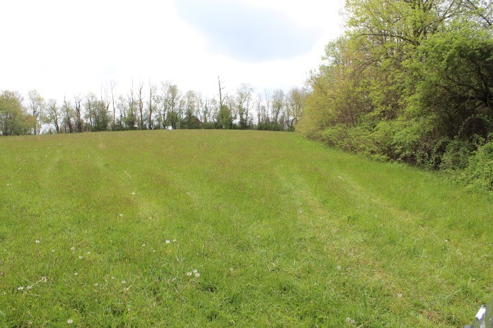 LAND FOR SALE IN MEADOWS OF DAN  VIRGINIA AREA