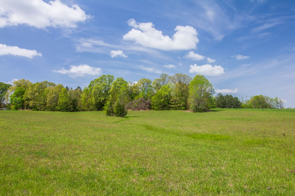 Michie, Tennessee Land for Sale; 21 Acres