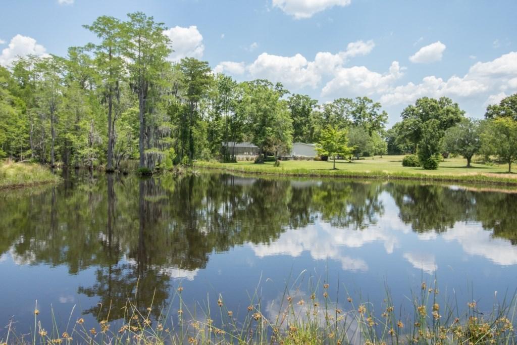 154 Acres & Home -  Pond - Hunting /fishing - Southeast AL